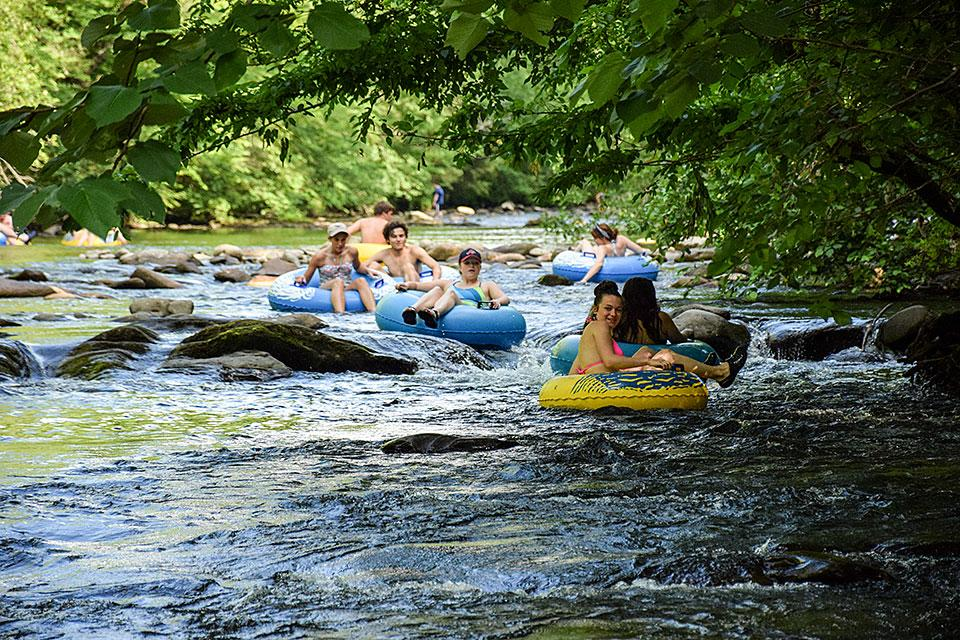 Things To Do In The Smoky Mountains: 5 Things You MUST Do When Visiting The Great Smoky