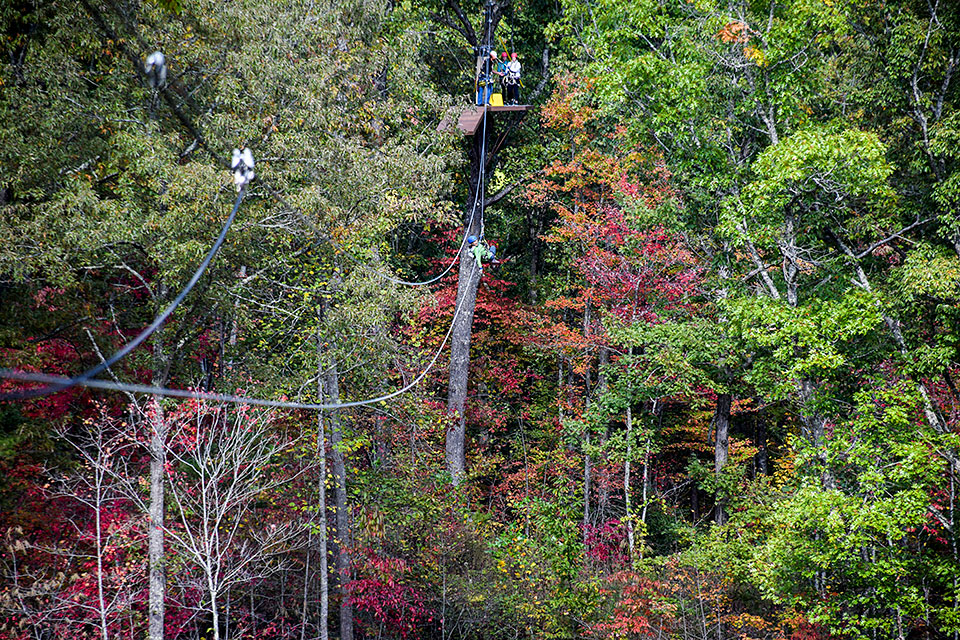 Fall Colors Zip Line - Copyright 2019, Smoky Mountain Ziplines