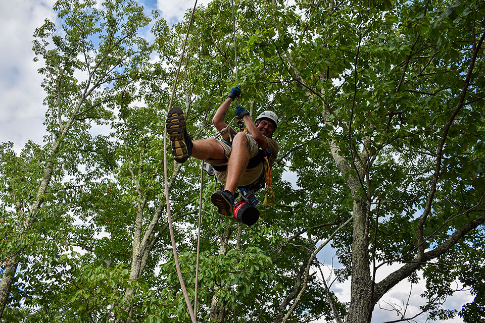 Guide Descending - Copyright 2019, Smoky Mountain Ziplines